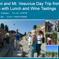 Fabulous Tour of Pompeii Vesuvius Wine Tasting Lunch Naples